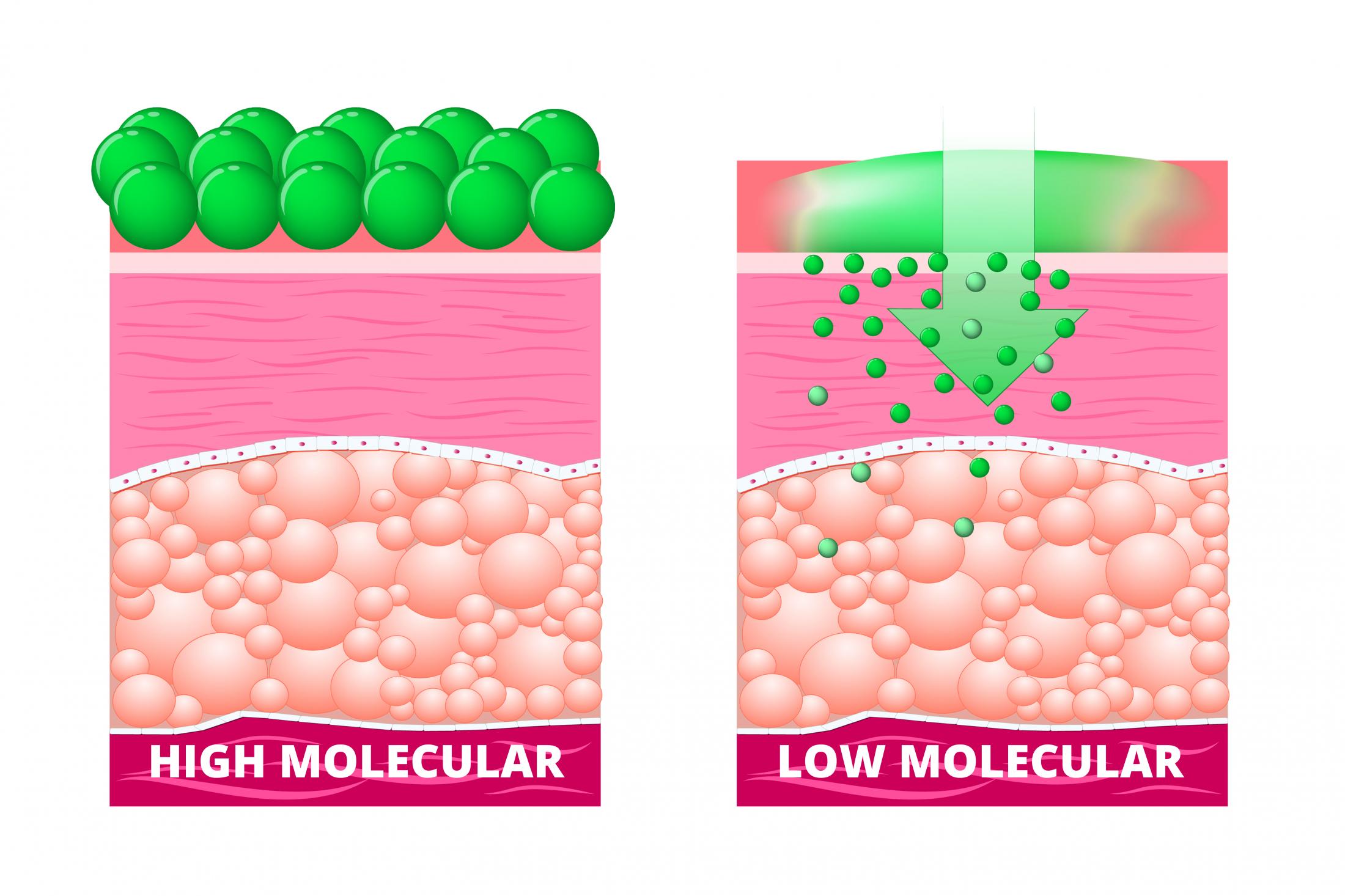 molecular jpg